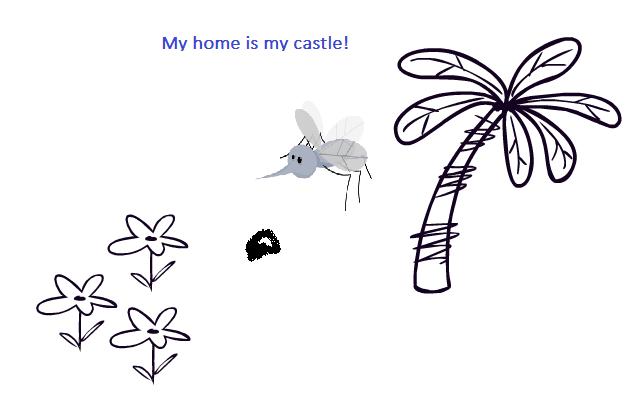 Eine Biene erkennt ihren Wohnort über die Metaebene.