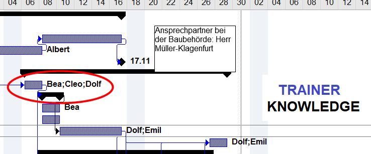 Im Gantt Cahart und auch allen weiteren Bereichen in Project, lassen sich grafische Komponenten, Excel oder andere Objekte integrieren.