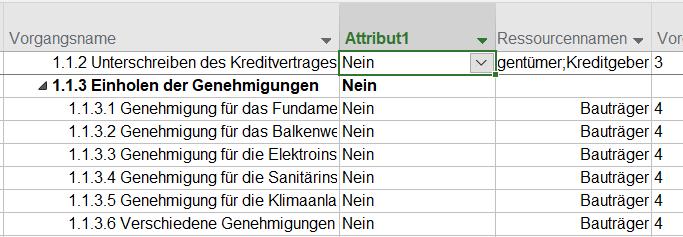 Das Bild zeigt das Einfügen eine Attribut1 Felds in einer Tabelle MS Projects.