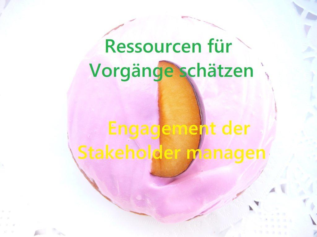 Ein Donut für Prozesse des PmBok Guides, z.B. Engagement der Stakeholder managen