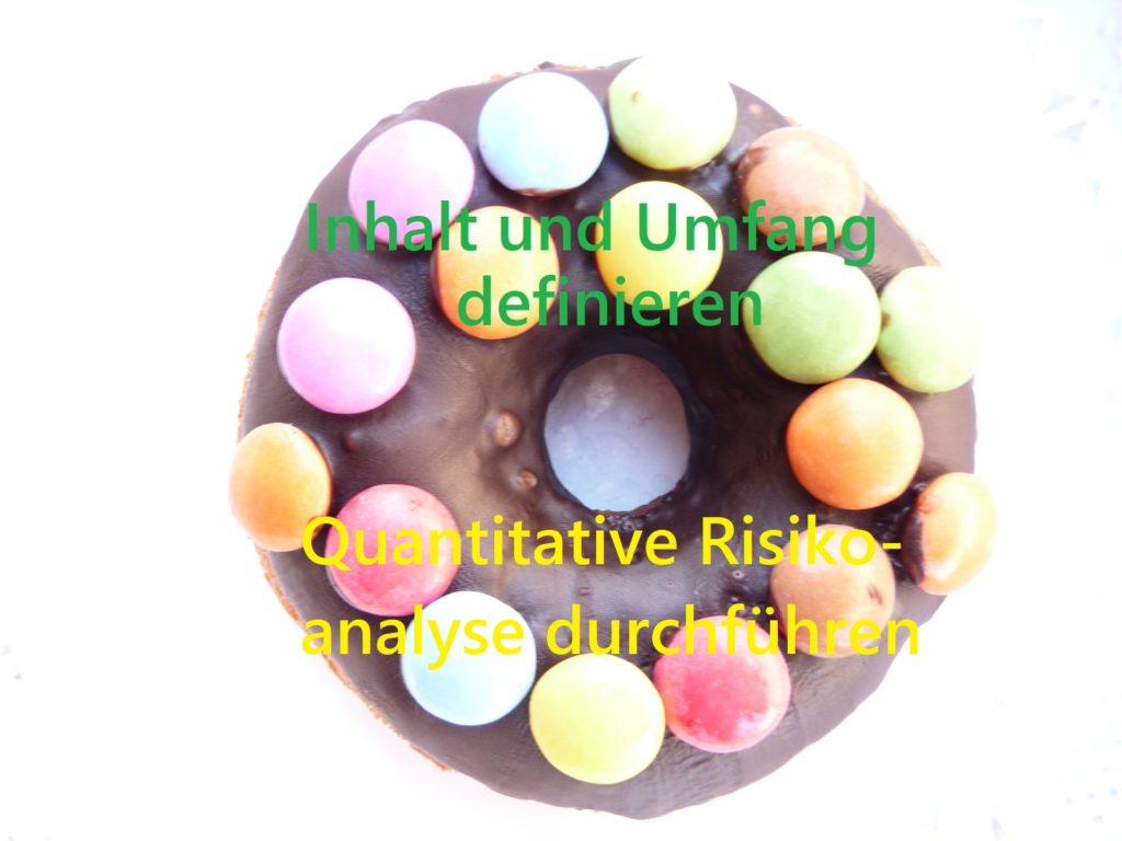 Ein Donat für Prozesse des PmBok Guides, z.B. Quantitative Risikoanalyse durchführen.