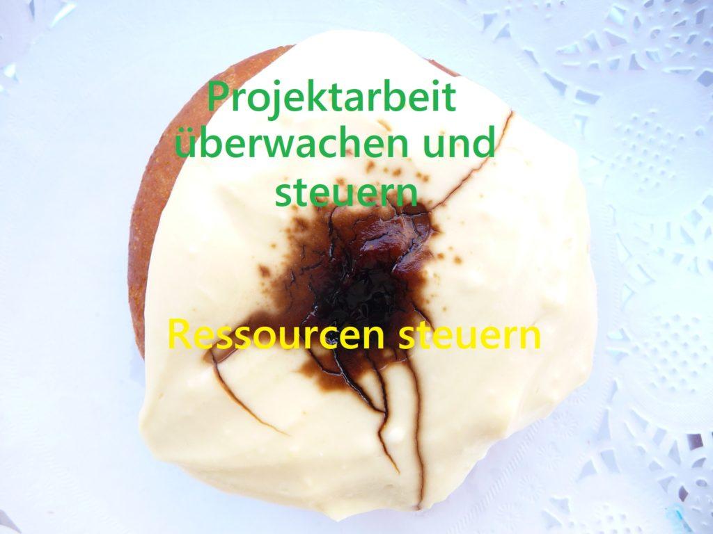 Donut für Prozesse des PmBok Guides z.B. Ressourcen steuern.