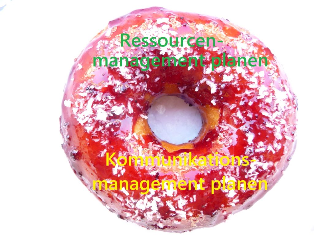 Ein Donut für Prozesse des PmBok Guides, z.B. Ressourcenmanagement planen