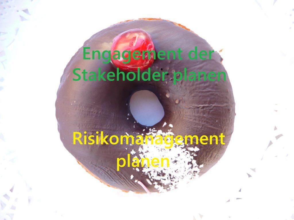 Ein Donut für Prozesse des PmBok Guides, z.B. Risikomanagement planen