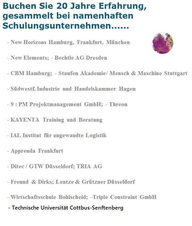Die Überschrift: 20 Jahre Rfahrung in diversen deutschen Trainingsunternehmen. Darunter werden etwa 17 oder 18 Trainingsunternehmen aufgelistet.